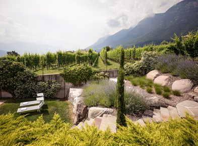 Mediterranean garden with sunbathing lawn in the Villa Pernstich, Caldaro