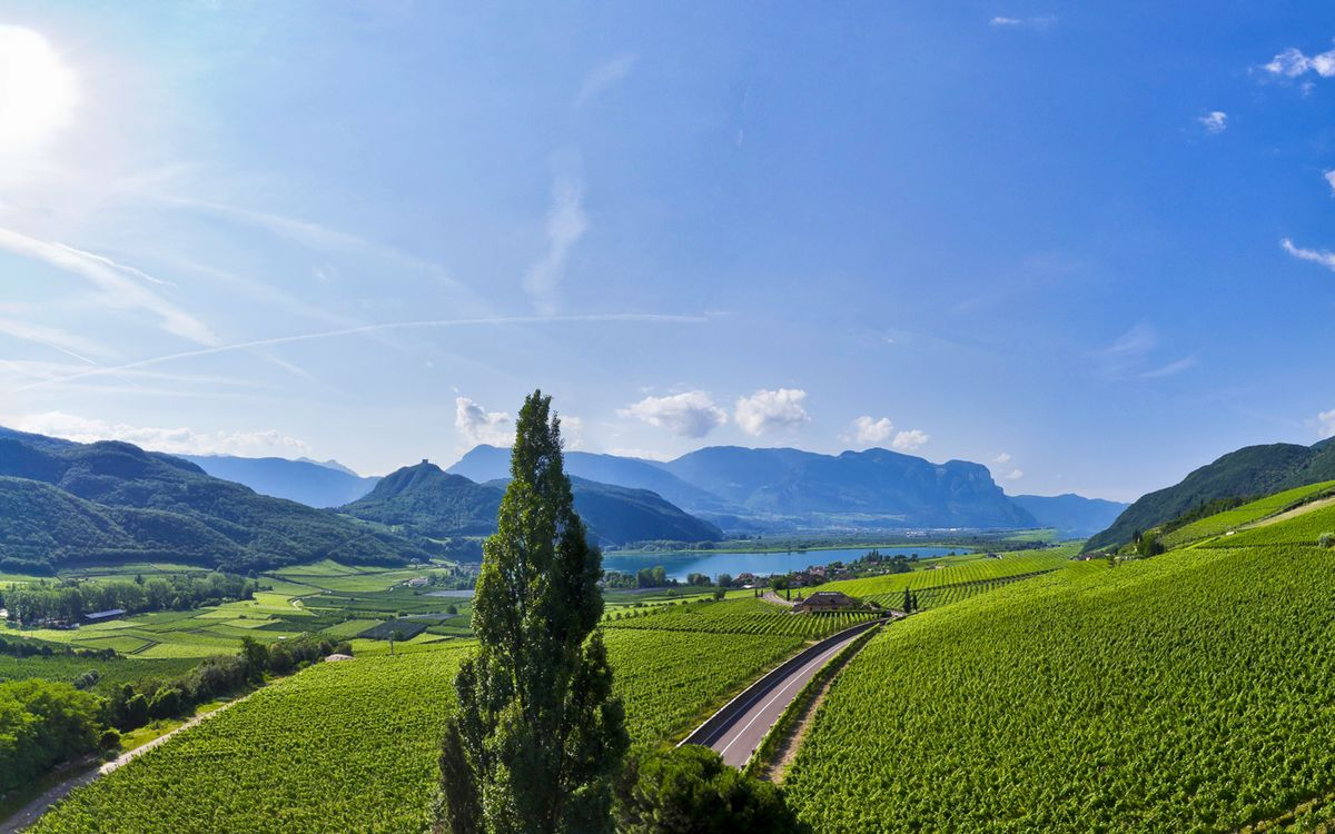 Panoramic view over Lake Caldaro | Villa Pernstich in Caldaro, South Tyrol